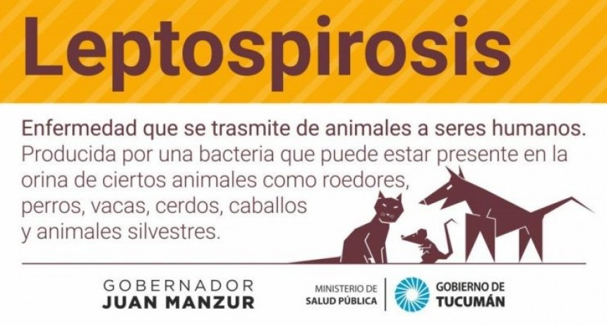 Recomendaciones para prevenir la Leptospirosis