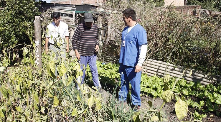 Estudiantes de la Escuela de Huasa Pampa Sur trabajan para reforestar la localidad