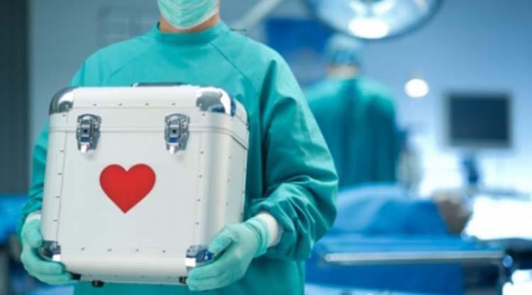 Promocionarán la donación de órganos durante las PASO