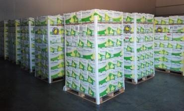 Tucumán exportó limones a México por primera vez