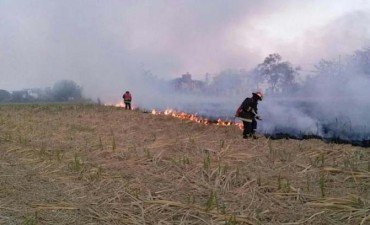 Combaten la quema de caña con operativos preventivos
