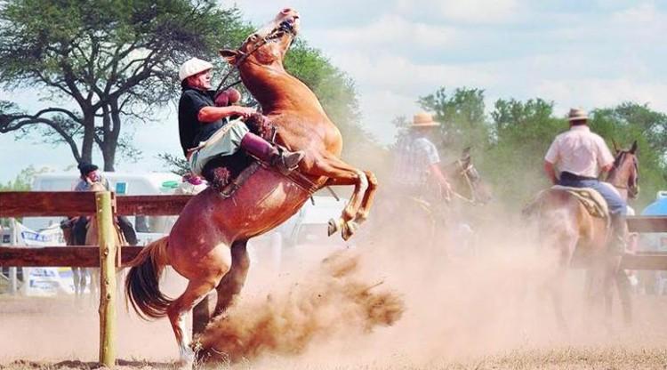Leales recibe a visitantes con tradición, jineteada y folclore