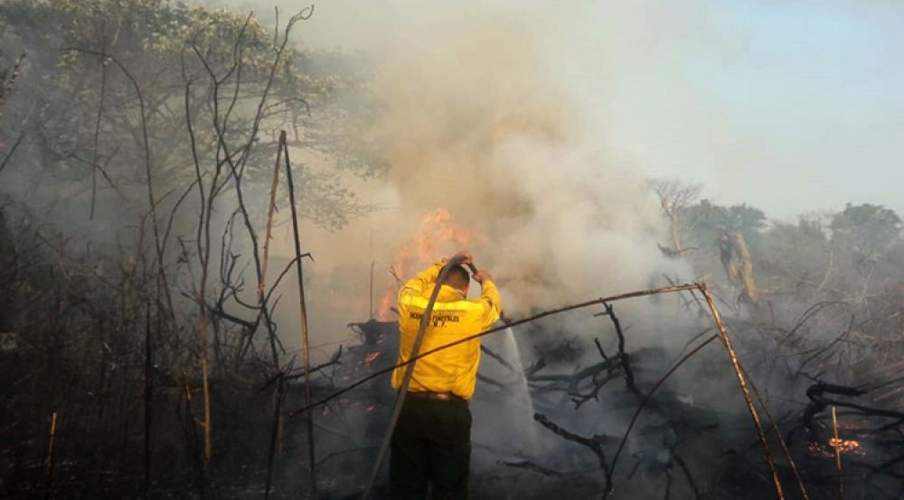 Intenso trabajo de Brigadistas y bomberos contra el fuego