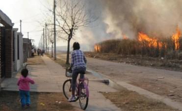 Intensifican controles por la quema de cultivos